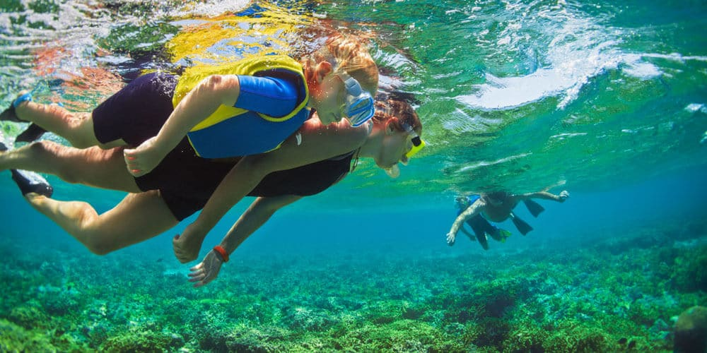Bimini Snorkeling Adventure for the Whole Family
