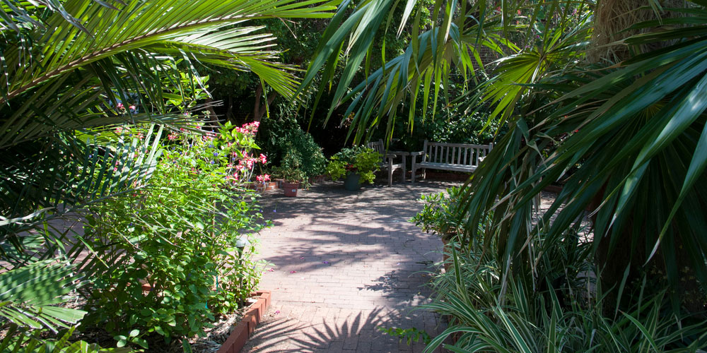 Visit Key West Botanical Garden