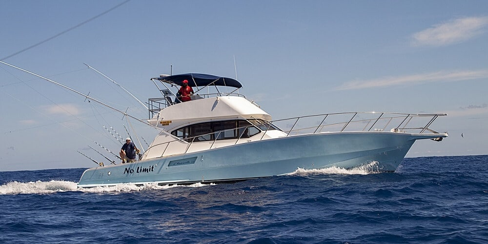 Experience Key West Shark Fishing