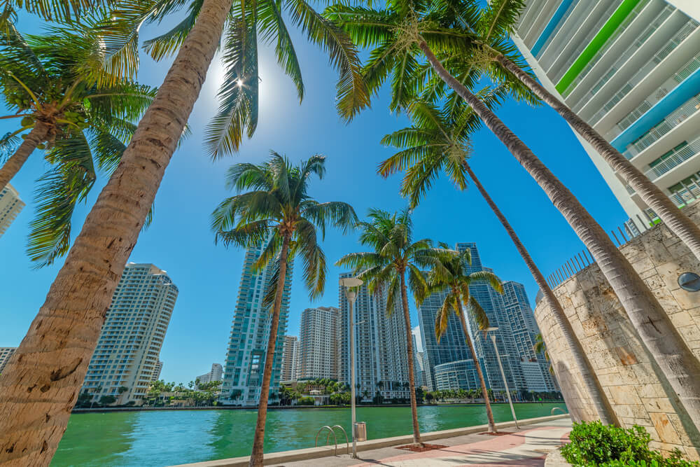 Miami River Florida a great choice for a Yacht Cruise